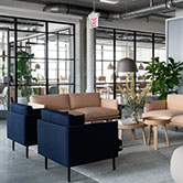 4 Ways to Add Biophilic Elements into Your Office Space